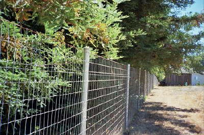 Fencing Solutions;Prices: Fences, Fencing, Horse Fence, Vinyl